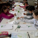 Let's Paint in Watercolour!