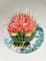Watermelon Hedgehog